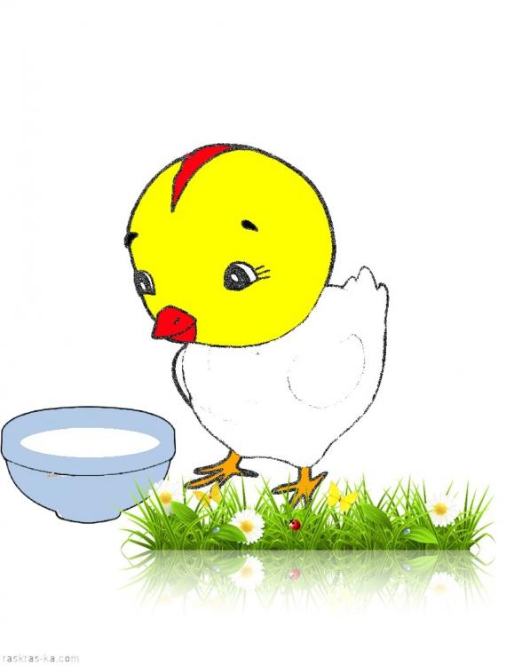 цыплята картинки для детей